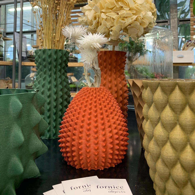 Splendidi vasi e fiori disidratati e stabilizzati