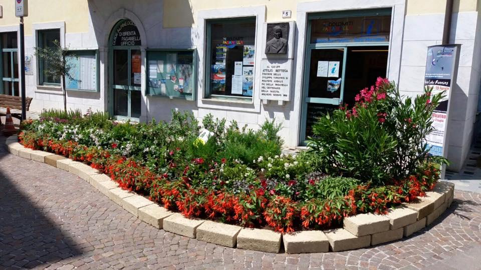 Allestimento floreale realizzato da noi per piazze fiorite davanti al municipio di Molveno!!!