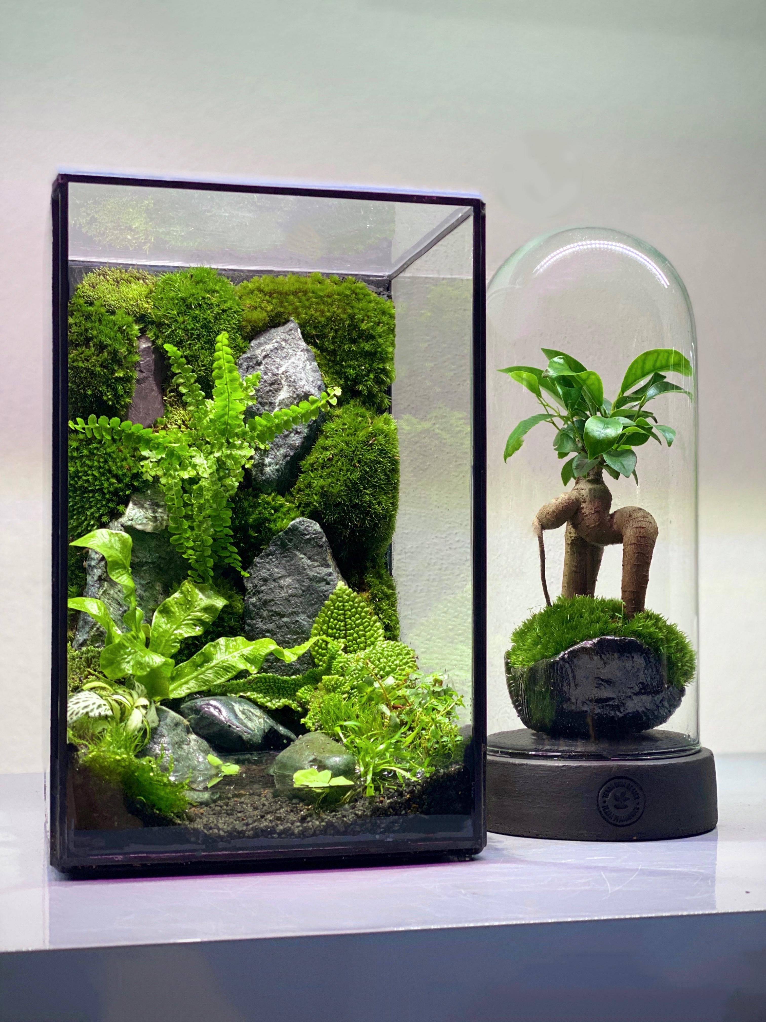 Nano Garden